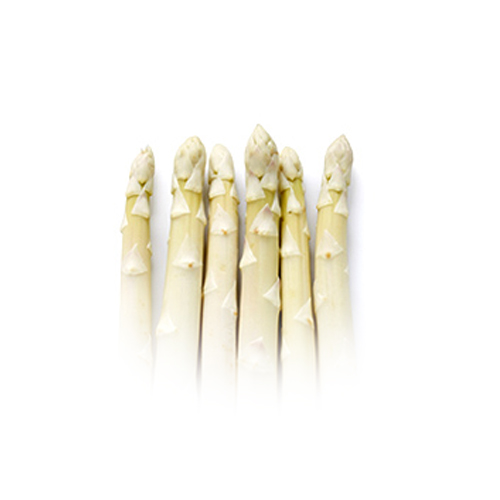 asperges tips wit
